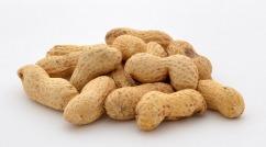 peanuts-316472_960_720